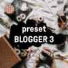 blogger3 preset shop nahled